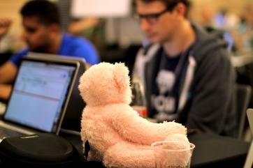 hacker bear