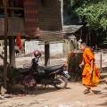 tardy monk