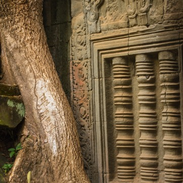 tom and sam made their mark on ta prohm