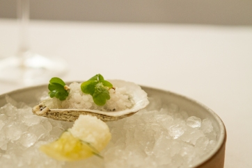 Oyster, mignionette snow, marinated fennel faux-oyster.