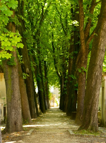 the world's most inviting cemetary